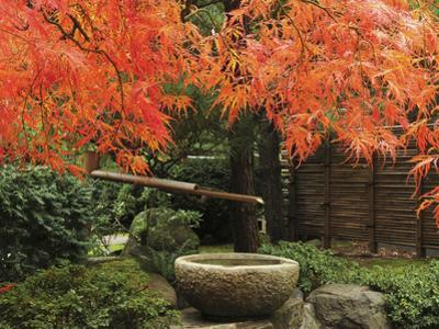 Portland Japanese Garden in Autumn, Portland, Oregon, USA,