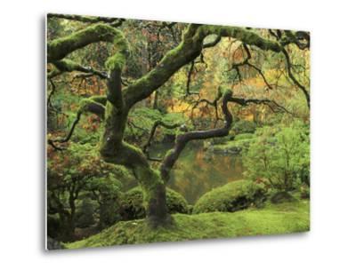 Portland Japanese Garden in Early Autumn: Portland Japanese Garden, Portland, Oregon, USA