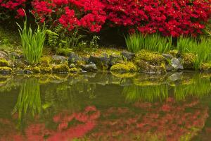 Portland Japanese Garden in Spring, Portland, Oregon, Usa by Michel Hersen