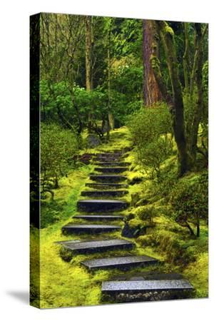 Spring on the Steps, Portland Japanese Garden, Portland, Oregon, USA