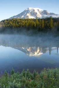 Sunrise, Mount Rainier, Reflection Lake, Mount Rainier NP, Washington by Michel Hersen