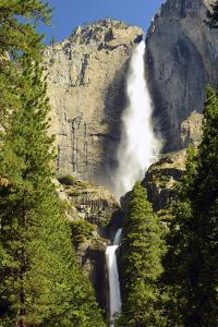 Upper and Lower Yosemite Falls, Merced River, Yosemite NP, California by Michel Hersen