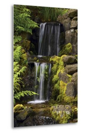 Waterfall, Crystal Springs Rhododendron Garden, Portland, Oregon, USA