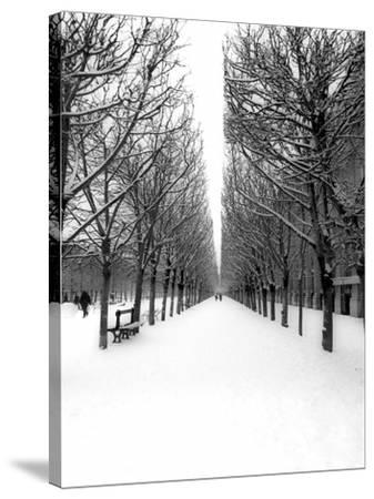 The Tuileries Garden under the snow, Paris