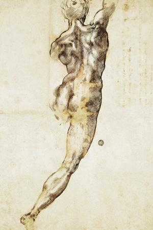 A Male Nude Seen from Behind, Study for the Battle of Cascina