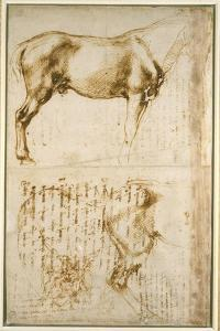 Anatomic Horse Study, 1504 by Michelangelo Buonarroti