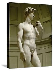 David, 3/4 Profile by Michelangelo Buonarroti