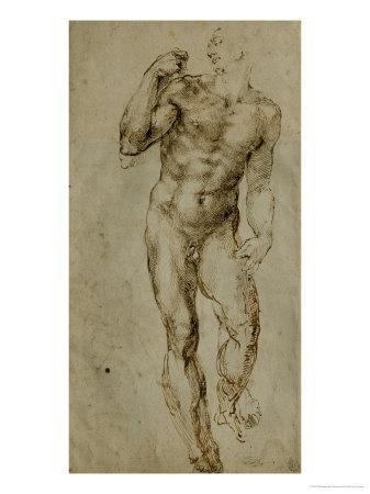 Nude Male Figure Seen Frontally, circa 1502-1506