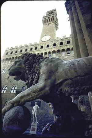 Replica of the David under Belly of Roman Lion in Piazza Della Signoria, Florence