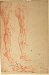 Studies of Legs and Arms (Red Chalk on Paper) by Michelangelo Buonarroti