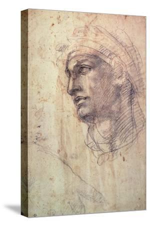 Study of a Head (Charcoal) Inv.1895/9/15/498 (W.1)