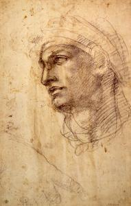 Study of a Head (Charcoal) Inv.1895/9/15/498 (W.1) by Michelangelo Buonarroti