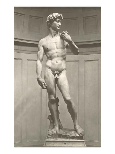 Michelangelo's David--Art Print