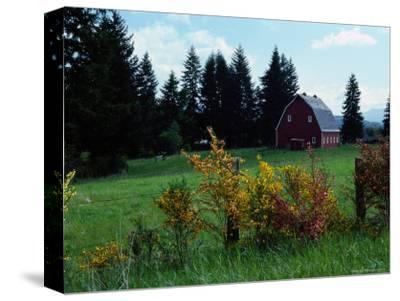 Red Barn in Meadow, Castle Rock, Washington