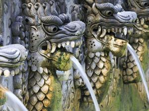 Indonesia, Bali, North Coast, Panjar, Sacred Hot Springs of Air Panas Banjar by Michele Falzone