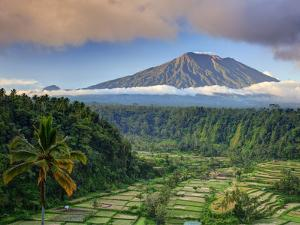Indonesia, Bali, Rendang Rice Terraces and Gunung Agung Volcano by Michele Falzone