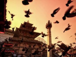Nepal, Kathmandu, Durbar Square (UNESCO Site) by Michele Falzone