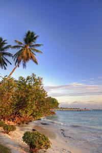 Oistins Beach, Barbados by Michele Falzone