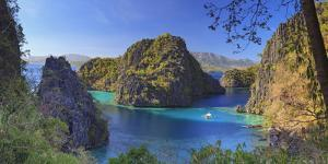 Philippines, Palawan, Coron Island, Kayangan Lake, Elevated View from One of the Limestone Cliffs by Michele Falzone