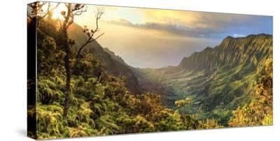 USA, Hawaii, Kauai, Na Pali Coast, Kalalau Valley