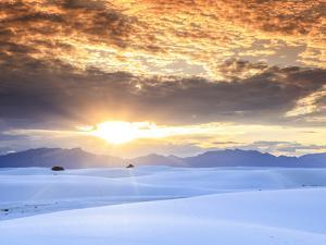 USA, New Mexico, White Sands National Monum by Michele Falzone