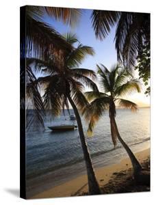 Vieques Island, Esperanza Bay, Puerto Rico by Michele Falzone