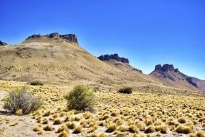 Argentina, Santa Cruz. Alero Charcamata (cave paintings site) and surroundings. by Michele Molinari