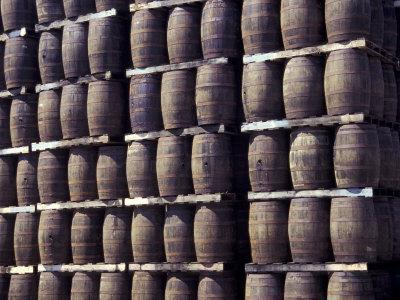 Bacardi Rum Ages in Oak Barrels, San Juan, Puerto Rico