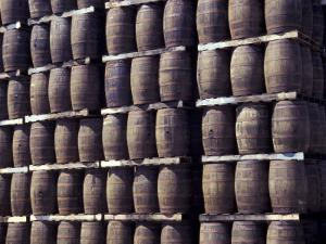 Bacardi Rum Ages in Oak Barrels, San Juan, Puerto Rico by Michele Molinari