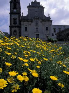 Baroque Style Cathedral and Yellow Daisies, Lipari, Sicily, Italy by Michele Molinari