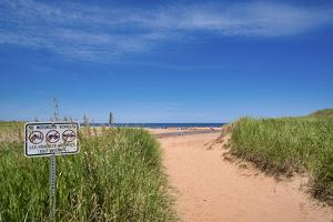 Canada, Prince Edward Island. Cousins Shore Beach by Michele Molinari