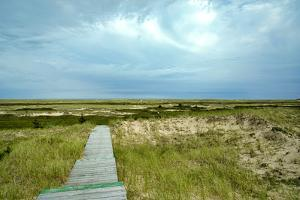 Canada, Quebec, Iles-de-la-Madeleine. Sandy dunes and walkway by Michele Molinari