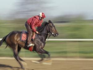 Keenland Horse Race Track, Lexington, Kentucky, USA by Michele Molinari
