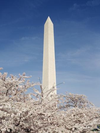 View of Washington Monument, Washington DC, USA