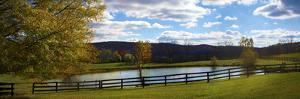 Panoramic scene in the vineyards in Virginia. by Michele Niles