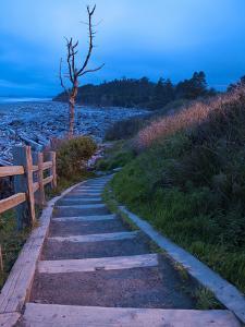 Beautiful Beach Area at Dusk, Kalaloch Lodge on the Olympic Coast, Washington, Usa by Michele Westmorland