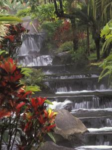 Spa and Gardens of Tabacon Hot Springs, Costa Rica by Michele Westmorland