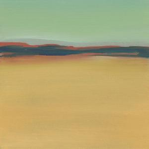 New Mexico by Michelle Abrams