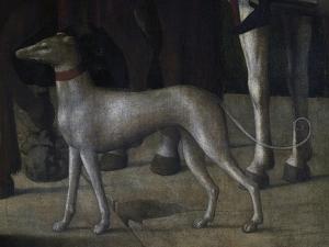 Dog by Michelle da Verona