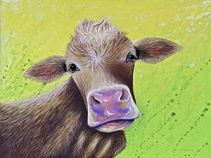 Jersey Cow by Michelle Faber