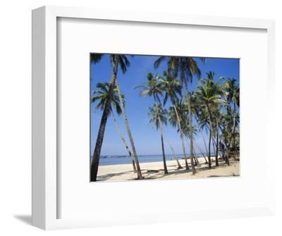 Palm Fringed Beach, Goa, India