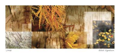 Yellow Mosaic III