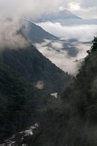 Low Cloud in the Potaro River Gorge, Guyana, South America by Mick Baines & Maren Reichelt