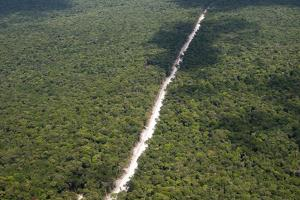 Main Highway of Guyana Cutting Through the Rainforest, Guyana, South America by Mick Baines & Maren Reichelt