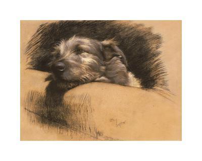 Micky-Cecil Aldin-Premium Giclee Print