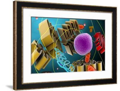 Microscopic View of Animal Cell Nucleus--Framed Art Print