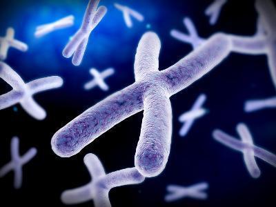 Microscopic View of Chromosome-Stocktrek Images-Photographic Print