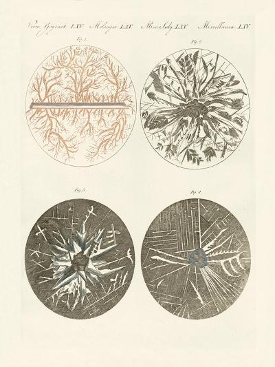 Microscopic View of the Crystallization of Metal--Giclee Print