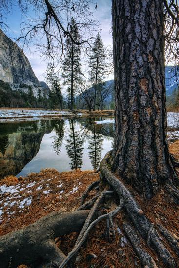 Mid Winter Riverside Reflections Yosemite National Park-Vincent James-Photographic Print