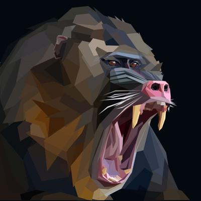Angry Ape Monkey Mandrill Baboon Screaming in Rage on Dark Background by mid92